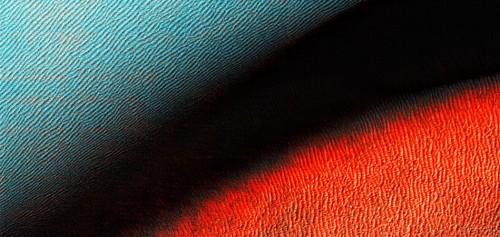 MuseInSitu : Drifting Orchestra - Centre National de Création Musicale Ile de France - CNCM - La Muse en Circuit (Alfortville -94) - Centre National de Création Musicale Ile de France - CNCM - La Muse en Circuit (Alfortville -94)